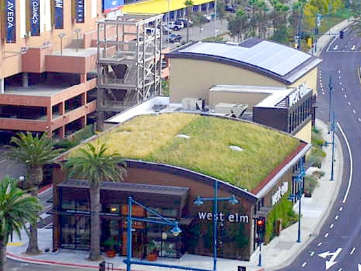 green-streets-green-roof